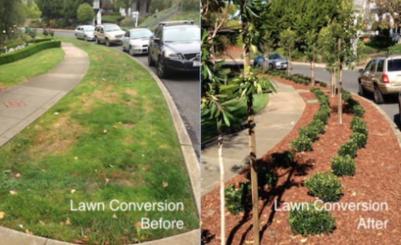 Lawn conversions